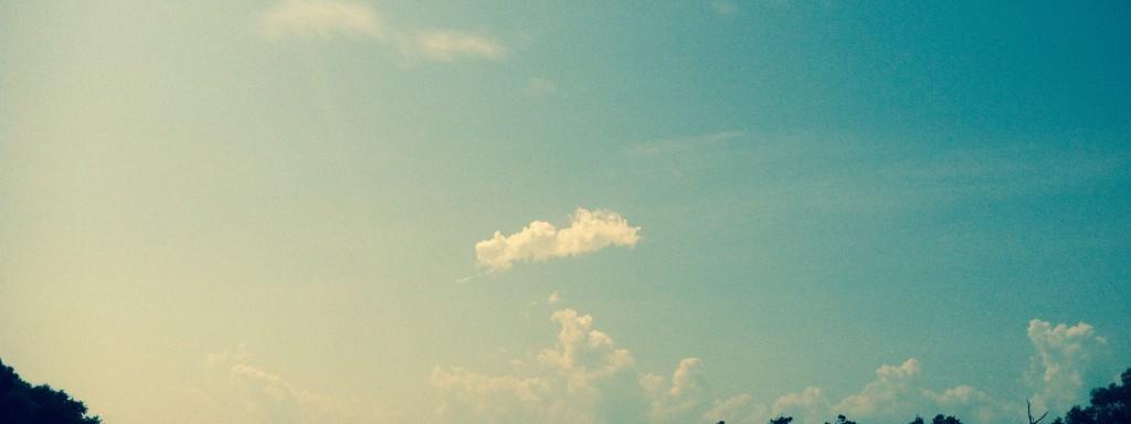 Marsh & Sky